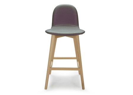 Bar Stool With Wooden Base & Backrest
